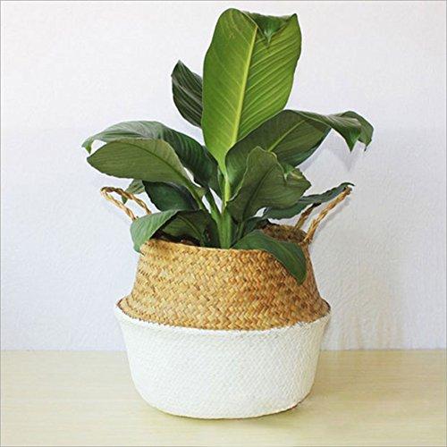 gro nat rliche seegras bauch korb panier hand gewebt korb mit griff faltbar pflanze. Black Bedroom Furniture Sets. Home Design Ideas